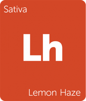 Lemon Haze Terpenes