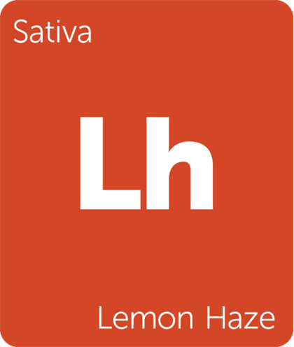 Lemon Haze Terpene...