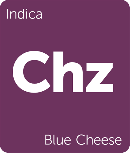 Blue Cheese Terpenes